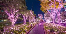 W zimie wiele miejsc w Tokio ozdabiają piękne dekoracje świetlne. Zdjęcie Patryk KosmiderShutterstock.jpg
