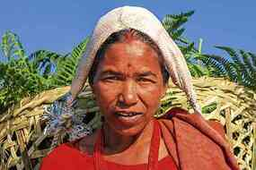 Machapuchare on background, Pokhara iStock-537379894.jpg