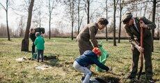 Enea Połaniec założyła dębowy park z okazji 40-lecia Elektrowni Połaniec (2).jpg