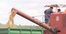 Zwiazki rolnicze - mat red IV.mov