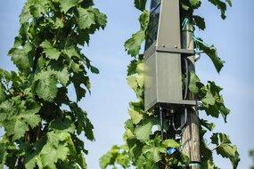 rolnictwo a sieć 5G_Ericsson.jpg