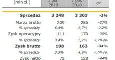 Budimex_wyniki_grupy_Ipół2019.PNG