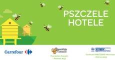 Pszczele Hotele_grafika.png