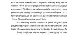 proporzec 13 ŚBOT.pdf