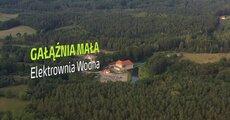 galaznia_mala.mp4