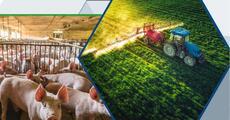 Raport Rolnictwo.pdf