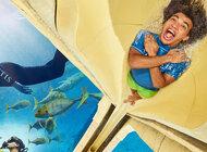 Lot do Dubaju z Emirates w promocyjnej cenie oraz wejściówka do Atlantis Aquaventure i Lost Chambers