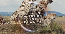 500_bbcs-swop-africa-a3-square-420x420mm-72dpi-rgb-aw-678917.jpg