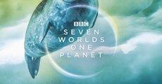 500_bbcs-swop-antartica-a3-square-420x420mm-72dpi-rgb-aw-287253.jpg