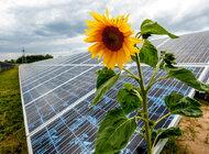 Energa zbuduje kolejną farmę fotowoltaiczną