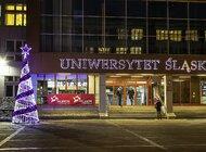 Uniwersytet Śląski ma nową choinkę