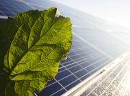 Trzykrotny wzrost mikroinstalacji w sieci Energi