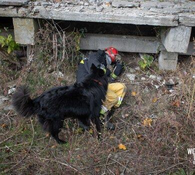 szkolenie NZPR psy K9 13ŚBOT (7).jpg