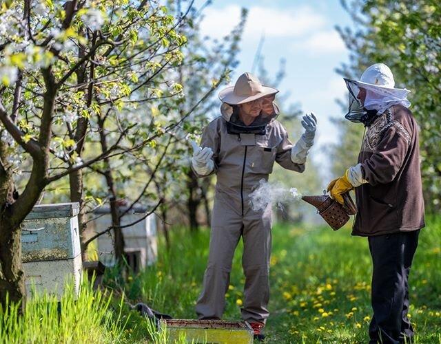 """""""Im więcej pszczół tym lepiej"""" - opryski na bazie roślin, stosowane przy ekologicznych uprawach, zapewniają im bezpieczne warunki do rozwoju 🌼 Sprawdźcie nowe #EkoTropyBartkaTopy i naszej #ElektrycznejHybrydy, aby lepiej poznać..."""