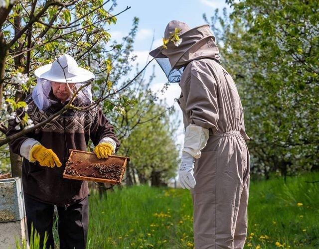 """@bartlomiej.topa.official: """"Ekologia ma fundamentalne znaczenie dla nas wszystkich. Każdy z nas powinien o nią dbać we własnym zakresie."""" Troska o środowisko i pszczoły to temat przewodni najnowszej odsłony #EkoTropówBartkaTopy..."""