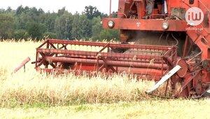 Pandemia im niestraszna: polscy rolnicy inwestują w maszyny