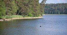 Zdjęcie Jeziora Głębokiego wykonane w dniu 17_06_2020.jpg