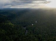 Świat bez lasów deszczowych to świat bez czekolady