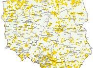 Barszcz kaukaski (Sosnowskiego i Mantegazziego) zajmuje coraz większy obszar Polski. Próby likwidacji bez rezultatów