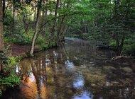 Rzeka urzeka - najwyższy czas pokochać rzeki