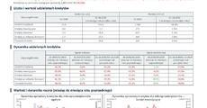 BIK_NL_Mikrofirmy_sprzedaż X 2020_30_11_2020.pdf