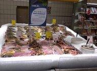 Auchan Retail Polska na rzecz dobrostanu zwierząt Festiwal karpia polskiego w Auchan