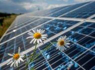 Energa w zielonej elicie rejestru EMAS