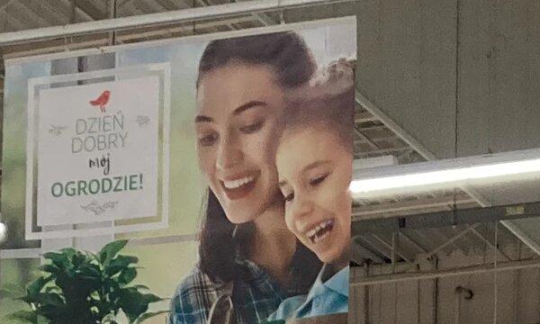 Auchan_ogórd_fot 3.jpg