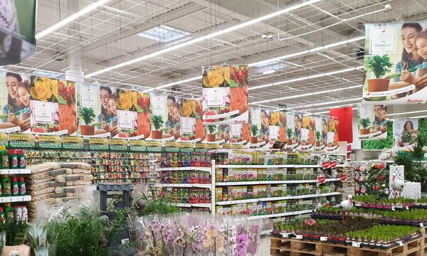 Auchan_ogród fot 5.jpg