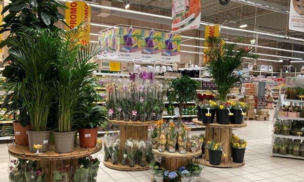 Auchan_ogród_fot 4.jpg