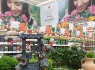 Wiosenny ogród Auchan - z troską o środowisko. Oferta w duchu zrównoważonego rozwoju dla miłośników prac w ogrodzie  i odpoczynku na świeżym powietrzu