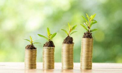 Zielona waluta dla Gdańska - międzynarodowy projekt prośrodowiskowy