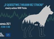 O sąsiedztwie z wilkami bez strachu - webinar WWF Polska