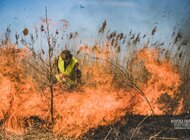 Rocznica zaangażowania terytorialsów w walkę z pożarem Biebrzańskiego Parku Narodowego