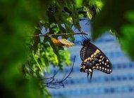 Pandemia, nowe technologie i kwestie ESG przyspieszą dezinwestycje