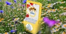 Razem w trosce o pszczoły – społeczna akcja organizowana w Biurach Obsługi Klienta Enei.jpg