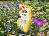 """""""Razem w trosce o pszczoły"""" – społeczna akcja organizowana w Biurach Obsługi Klienta Enei"""