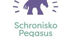 Pegasus_logo.png