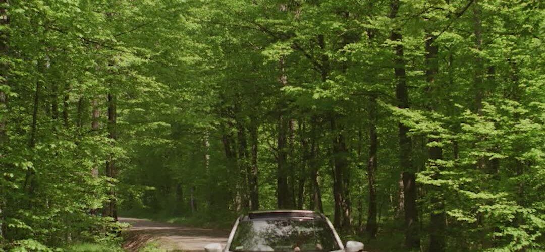 """Bartłomiej Topa: """"Pięknie tu widać ekosystem jako naczynia połączone - ssaki kopytne, wilki, odnowienie lasu."""" Odwiedź Puszczę Białowieską z Bartkiem Topą i #EclipseCrossPHEV. Cały odcinek naszej serii #EkoTropyBartkaTopy pojawi..."""