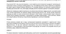 CEE_investment_H1_PL.pdf