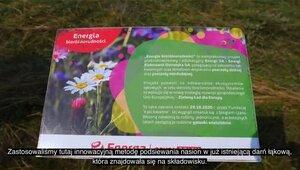 Energa wspiera bioróżnorodność w Ostrołęce