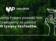Wirtualna Polska posadzi las