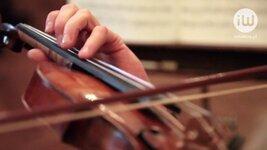 Świąteczna muzyka tworzy wyjątkowy nastrój. Przedsiębiorcy chętnie to wykorzystują