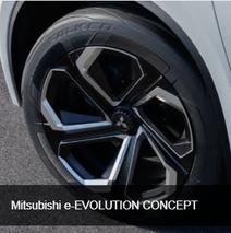e-evolution_concept.png
