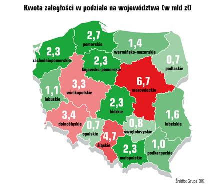 01_BIG_newsletter_grupy_wiekowe_infografika7.png
