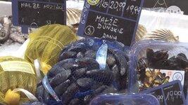 Owoce morza coraz popularniejsze na polskim stole, ale popełniamy dużo błędów w ich przyrządzaniu