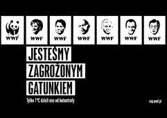 KV wwf pl.jpg