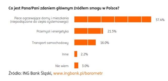 Co jest głównym źródłem smogu w Polsce?