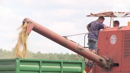 Czy rolnicy muszą wychodzić na ulicę, żeby ich interesy były należycie reprezentowane?