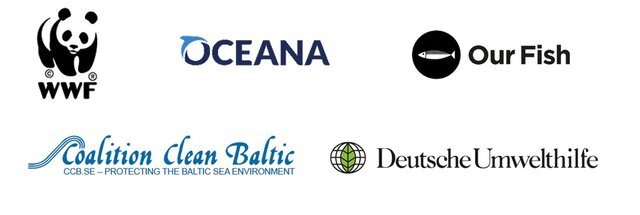 Organizacje pozarządowe wzywają do zamknięcia połowów na wschodnim stadzie bałtyckiego dorsza